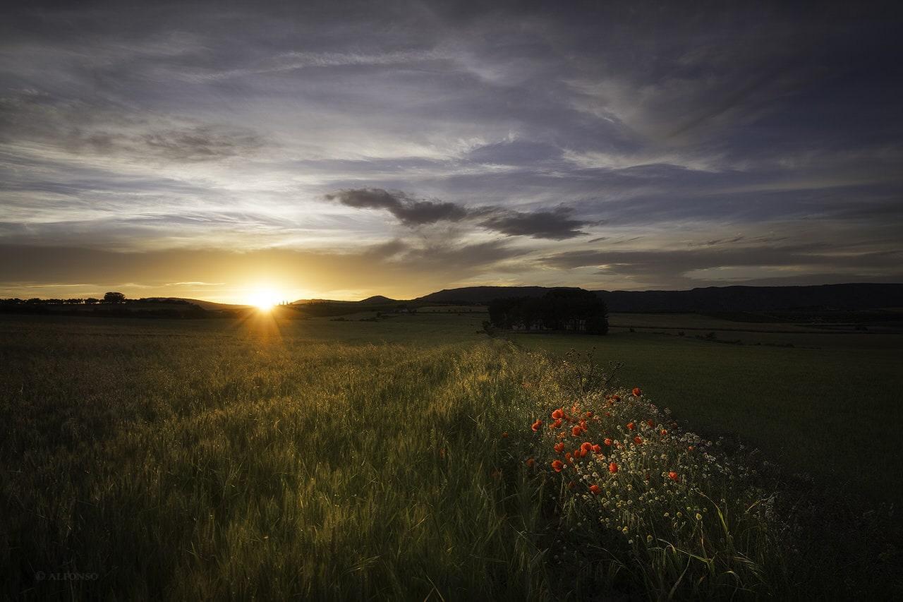 """La Toscana Valenciana"", por Alfonso Ruiz. Con Fuji X-T1 + XF 10-24mm F4."