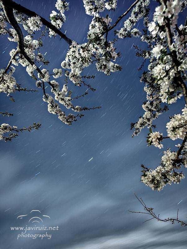"""""""Una noche para disfrutarla"""" por Javi Ruiz. X-T1 + Samyang 12mm f2"""