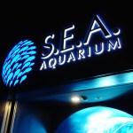 シンガポールの水族館 シー・アクアリウム(S.E.A Aquarium)