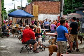 Pints 4 Paws at The Ruck