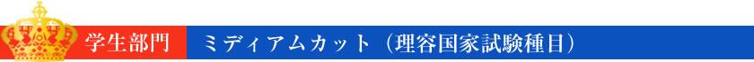ミディアムカット(理容国家試験種目)