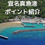 宜名真漁港 釣りポイント紹介