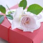 卒業祝のプレゼントを大学の先輩に贈る!喜ばれる品の選び方と渡し方