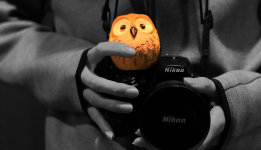 インスタグラマーの私の愛用カメラや撮影道具を全て教えます!