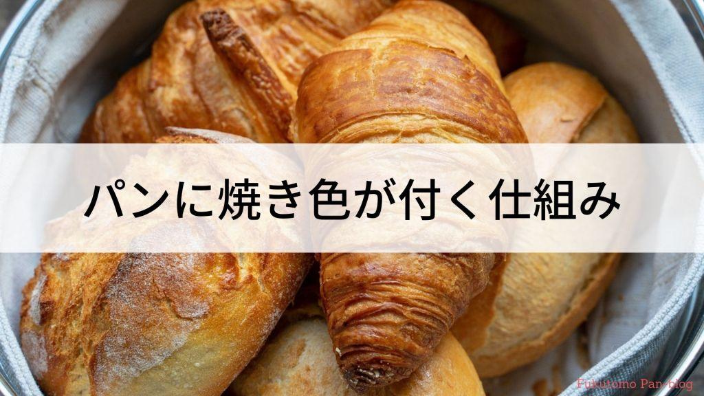 焼き色が付いたパン