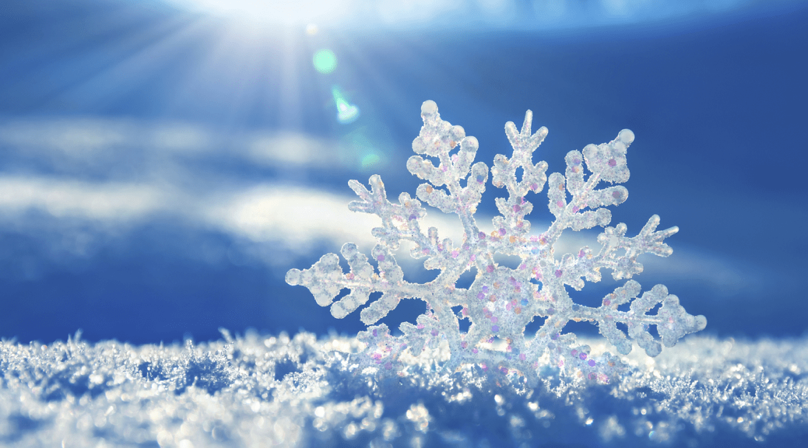 Lesson(s) of the Week: Winter Snowflakes & Snow Day