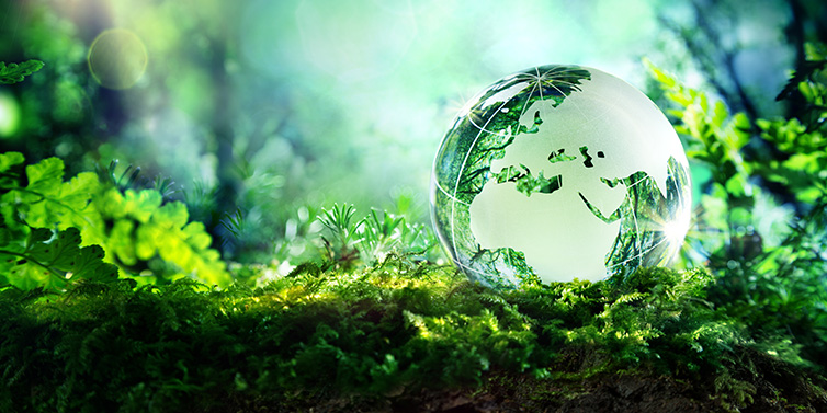 Lesson of the Week: Earth Day & Syntax
