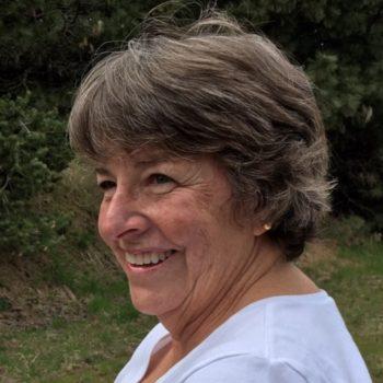 2017-Ann-Lewis