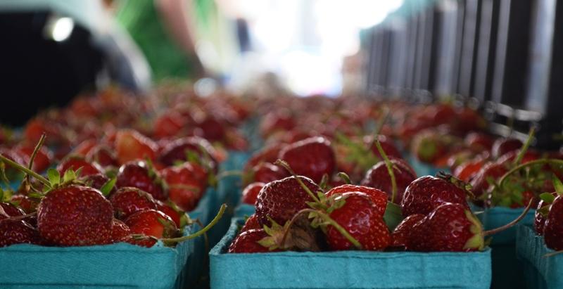 Summer Strawberries