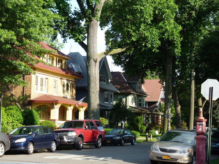 Tree Lined Street 4