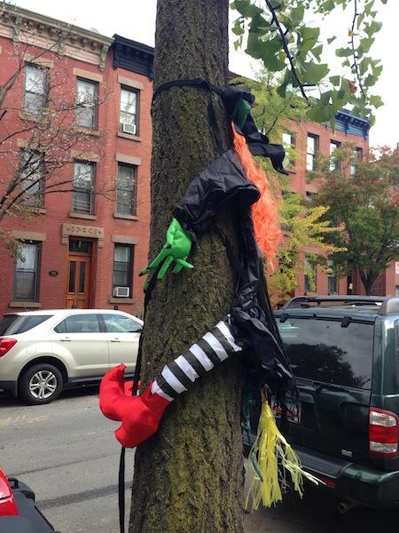 Wayward Witch in Park Slope Brooklyn
