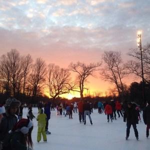 Lakeside Skating Rink at Prospect Park