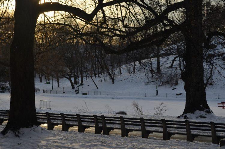 Setting Sun Over Central Park