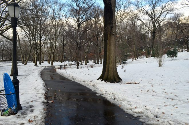 Discarded Sled in Riverside Park