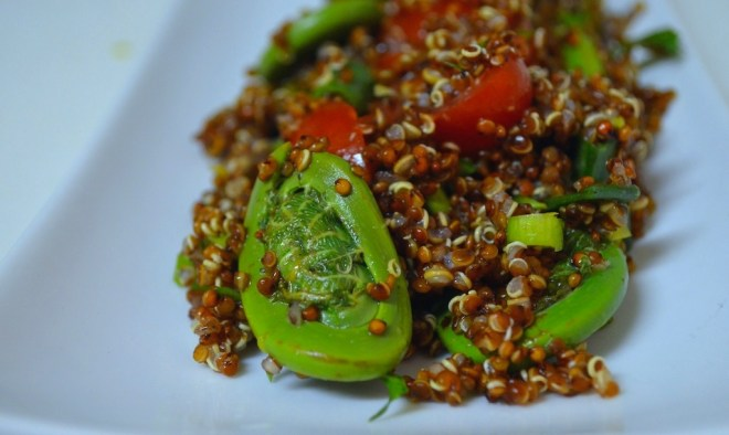 Red Quinoa and Spring Fiddlehead Salad