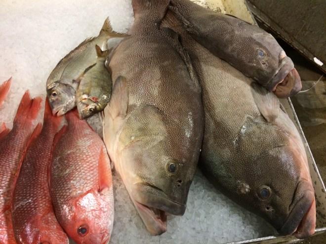 Fresh Fish at the New Fulton Fish Market