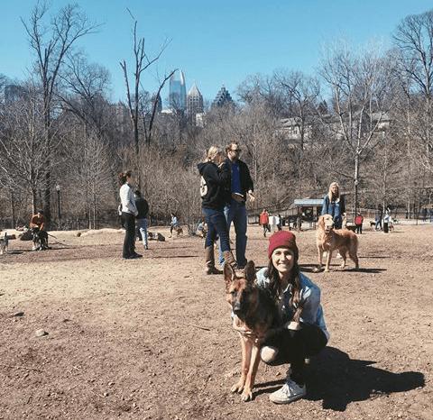 Piedmont Dog Park 2
