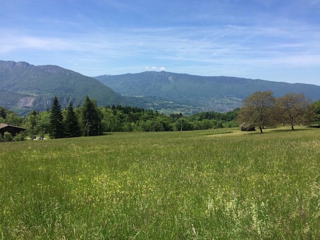 Empty Field in Annecy