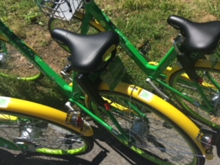 Lime Bikes in Yonkers