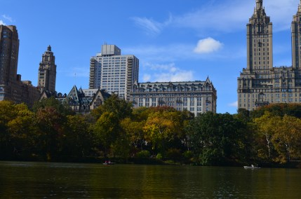 Central Park Fall 2013 13