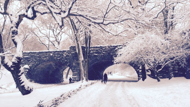 Snowy Bridge in New York City