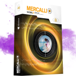 proDAD Mercalli v4 SAL+ 4.0.458.5 Full Crack With License Key Free Download