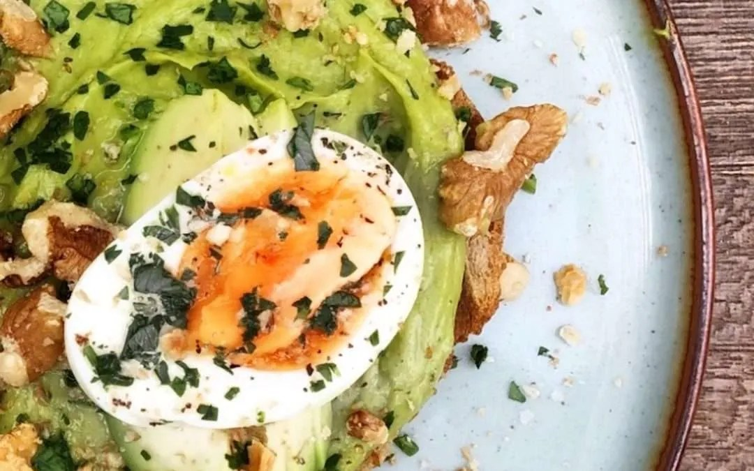 Why We Need: FAT, PROTEIN + FIBER at Every Meal