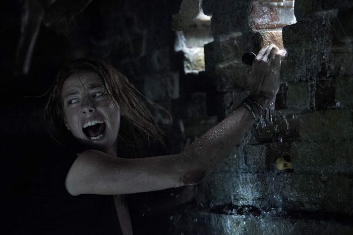 "'Crawl' Review: ""The Perfect Antidote To Prestige Horror"""