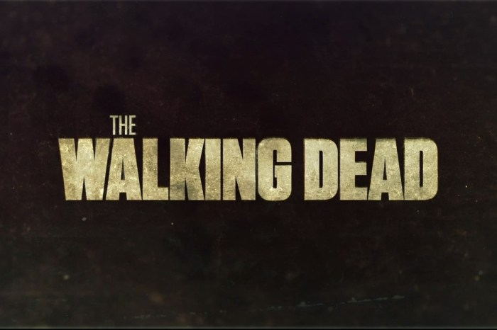 AMC's 'The Walking Dead' To Wrap Up After 11 Seasons In 2022