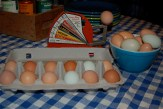Beautiful eggs