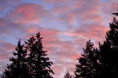 spectacular skies- 1/2/15