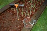 taking soil samples
