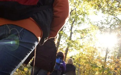 Hiking tips for you and your pet