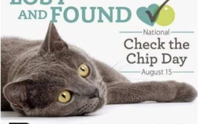Paws-ing to Check Your Pets' Chip Day