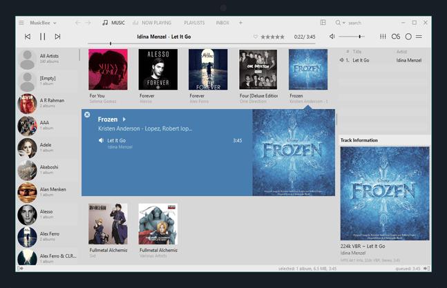 MusicBee 3.2.6756 Crack