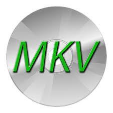 MakeMKV 1.12.3 Key Crack Free Download