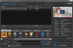 Program4pc Video Converter
