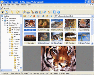 Apowersoft HEIC Photo Viewer Crack 1.1.7 Serial Latest Download 2021