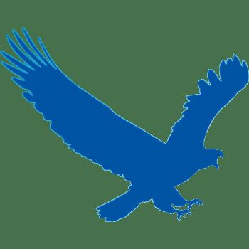 EagleGet 2.0.5.0 Crack