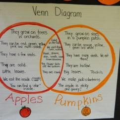 Venn Diagram Bulletin Board Lawn Sprinkler System Wiring Pumpkins Vs Apples Fuller Meadow Principal Blog