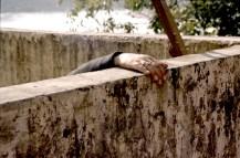 rishikesh * lakshman jhula