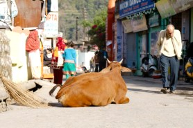 Main street in SWARG ashram