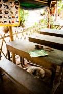 Angkor Wat - The school