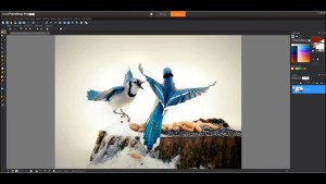 Corel PaintShop Pro 2021 v23.0.0.143 with Ultimate Crack [Full]