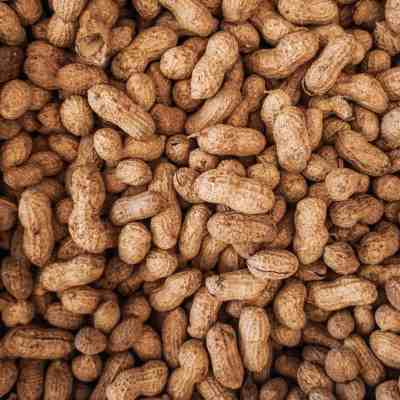 Your Child's Classmate Has A Peanut Allergy…Now What?