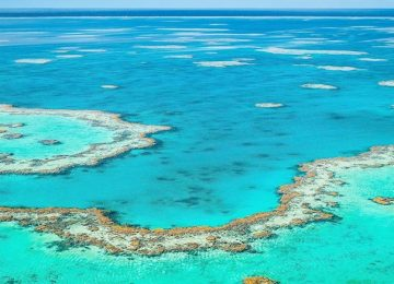 Great Barrier Reef Backgrounds 1024x437 Full HD Wall