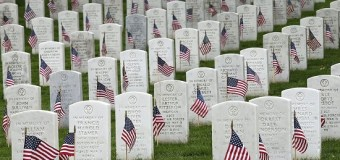 "John McCain, ""Today we honor the Americans who sacrificed everything"""