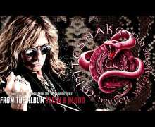 "Whitesnake ""Hey You…You Make Me Rock"" New Song 2019 – New Album"