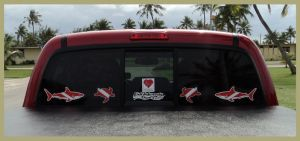 Diver decals on back window glass