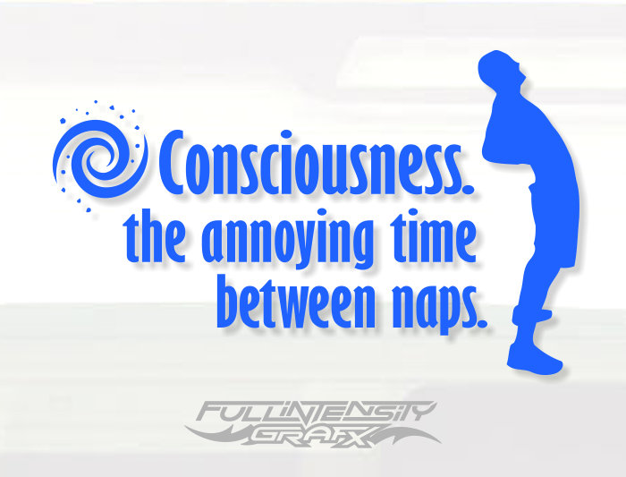 Consciousness vinyl decal